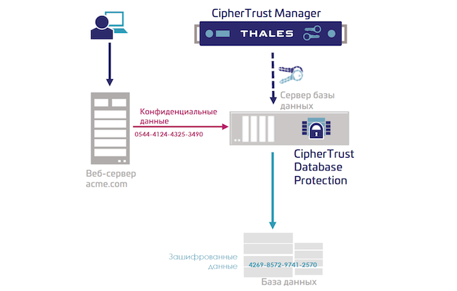Функциональная архитектура модуля CipherTrust Database Protection из состава CipherTrust Data Security Platform