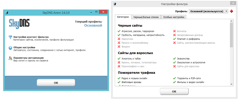 Интерфейс агента SkyDNS