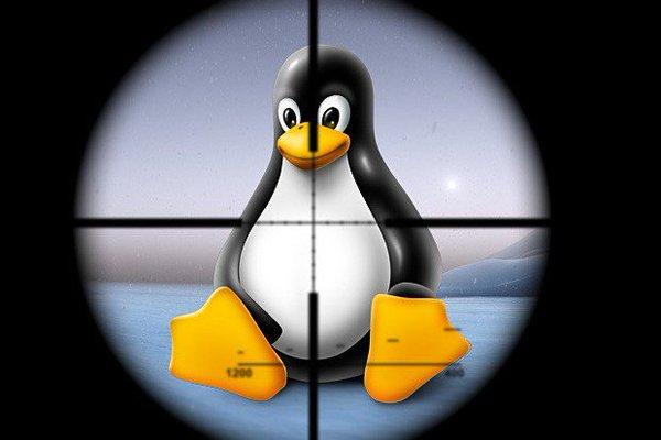 Эксперт Trend Micro обнаружил руткит для Linux