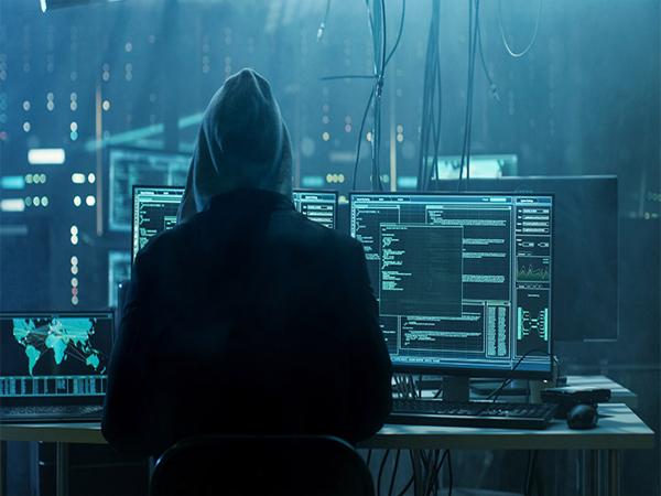 Хакер завладел доменами Newtek, 100 000 бизнес-сайтов в опасности