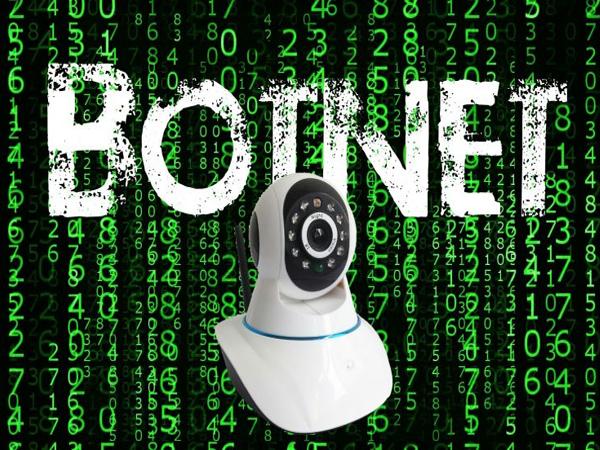 Ботнет Prowli заразил более 40 000 серверов, модемов и IoT-устройств