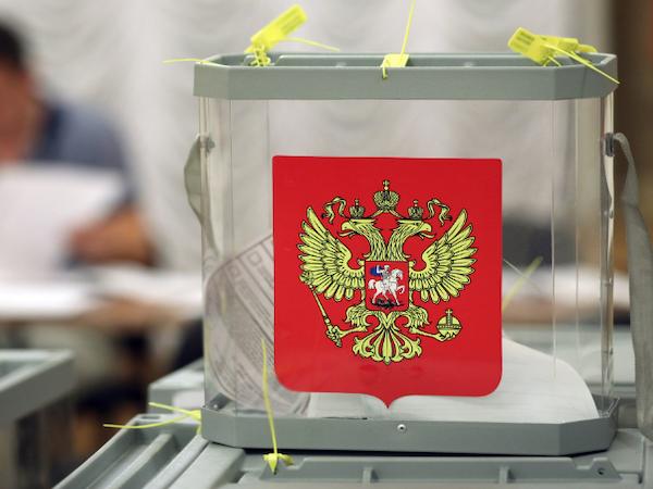 Мошенники создают копии сайта для голосования по поправкам к Конституции