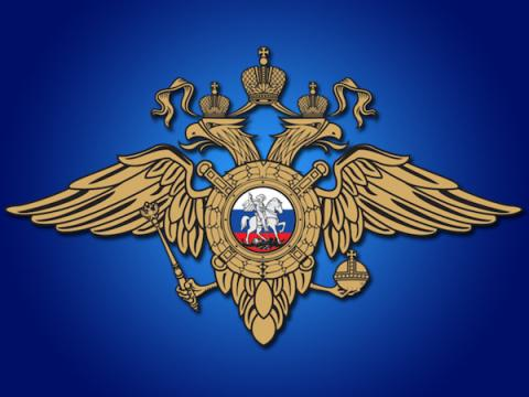 В МВД опровергли информацию о проверках у граждан Telegram