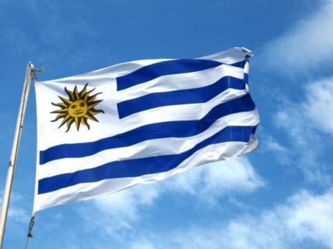 СёрчИнформ провела встречу с ведущими госкомпаниями Уругвая