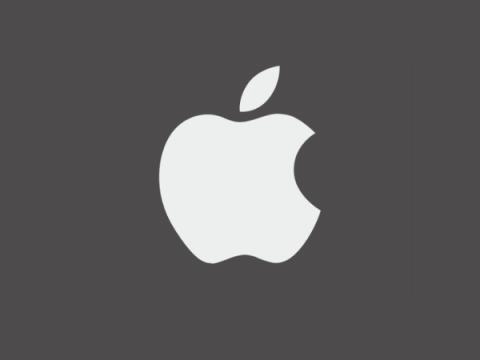В системе Apple для сканирования фотографий пользователей нашли изъян