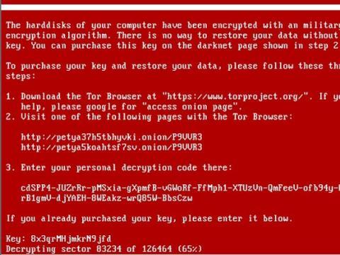 Количество атакованных шифровальщиком Petya достигло 2 тысяч