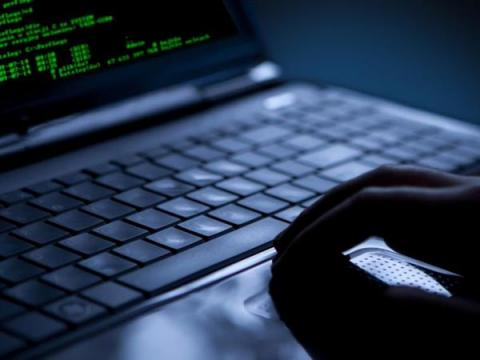 ESET зафиксировала 15 млн кибератак на пользователей торрентов