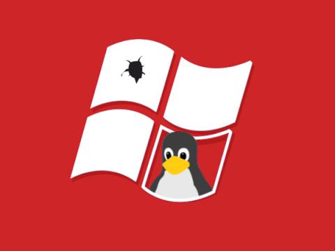 Обнаружен зловред, атакующий Windows через подсистему для Linux