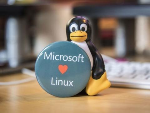 Microsoft хочет присоединиться к закрытому списку разработчиков Linux