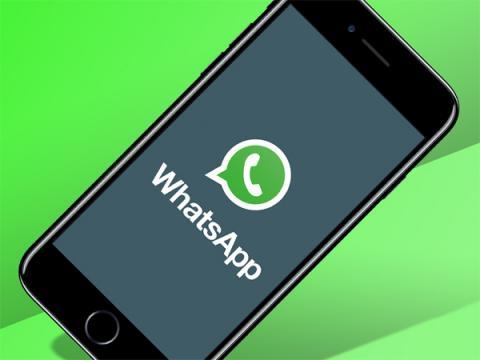 Бета-версия WhatsApp содержит баг конфиденциальности