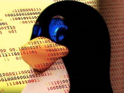 Боты FreakOut атакуют Linux-устройства через свежие уязвимости