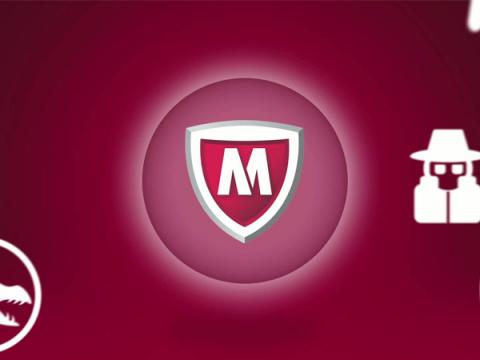 McAfee приобрела VPN-провайдера TunnelBear