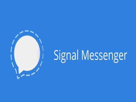 Новый баг в Signal позволяет получить переписку в виде простого текста