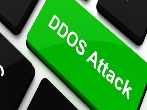 Треть российских компаний пренебрегают защитой от DDoS-атак