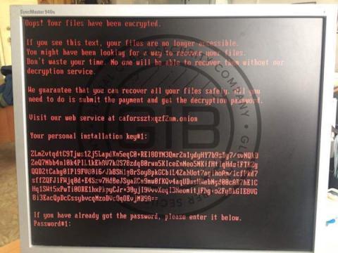 Group-IB: российские СМИ атаковал вирус-шифровальщик Bad Rabbit