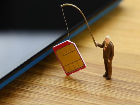 Американский юноша выкрал $1 млн, проведя атаку подмены SIM-карты