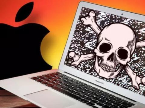 Новый майнер Bird Miner атакует любителей пиратских программ для macOS