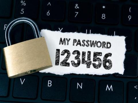 Avira: Самый распространённый слабый пароль — пустой