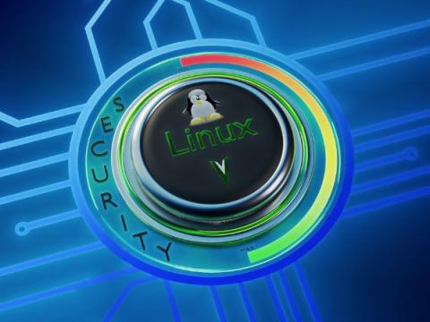 Торвальдс одобрил внедрение новой функции безопасности в ядро Linux