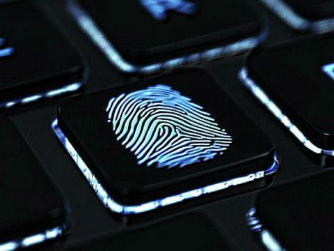 Принятие законопроекта по сбору биометрии россиян приостановлено