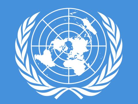 Слитые документы ООН подтверждают: организацию взломали киберпреступники