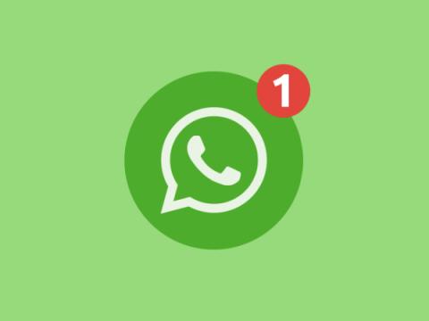 Signal, Wickr и проблемы приватности — стоит ли нам бросить WhatsApp