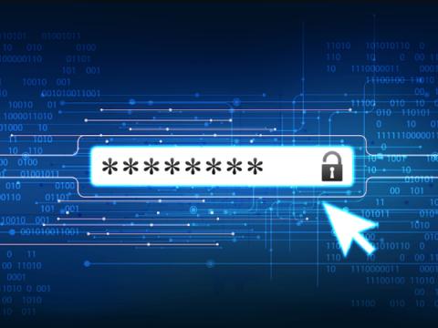 23% россиян хотя бы раз проверяли факт компрометации своих паролей