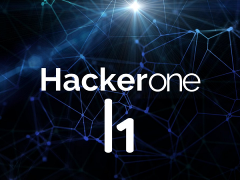 HackerOne за время существования выплатила белым хакерам $100 млн