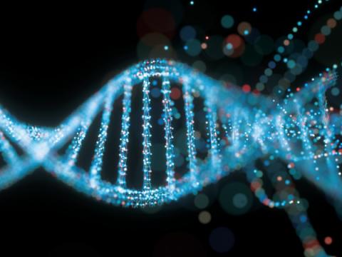 Путин поручил создать в России базу генетических данных граждан