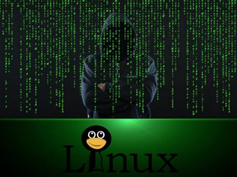Gitpaste-12: самоходный Linux-бот, вооруженный десятком эксплойтов