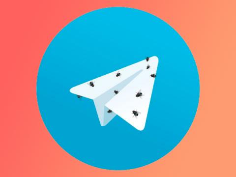 Telegram предлагал эксперту деньги за молчание о баге функции самоудаления
