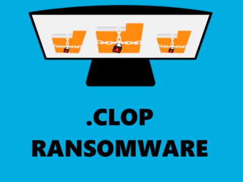 Полиция Украины задержала операторов шифровальщика Clop