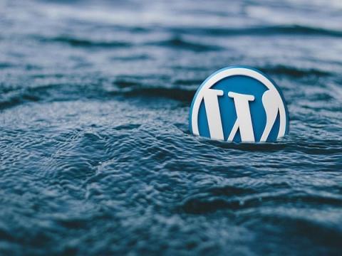 Баг в плагине WooCommerce ставит под угрозу онлайн-магазины на WordPress