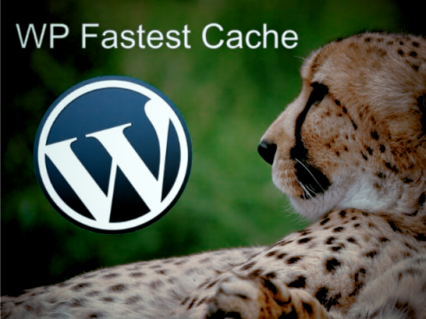 В плагине WP Fastest Cache найдены уязвимости CSRF, XSS и SQLi
