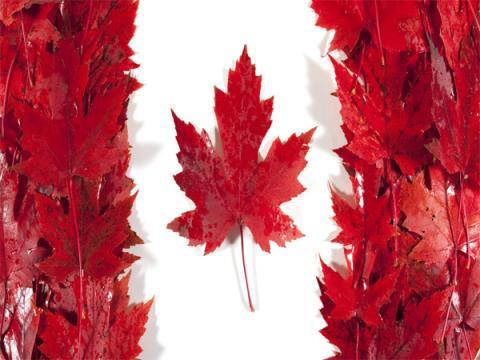 Спецслужбы Канады выпустили свой антивирус