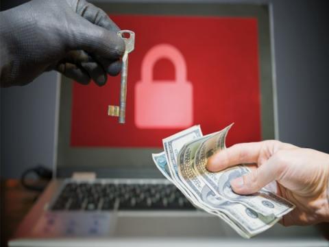 Опубликовано видео задержания распространявших CTB-Locker хакеров