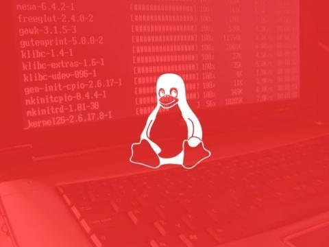 Linux-вредонос атакует устройства Raspberry Pi для майнинга криптовалюты