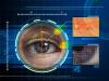 Единая биометрическая система: как работает цифровая аутентификация