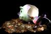 Банковский троян Ramnit возобновляет свою активность