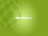 Webroot детектирует файлы Windows и Facebook как вредоносные