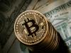 Как принимать платежи биткоинами на вашем сайте