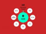 Обзор мирового и российского рынков систем XDR