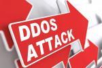 Защита от DDoS — обзор мирового и российского рынка