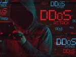 Сайт народной милиции ДНР стал жертвой DDoS-атаки