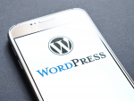 Новая версия движка WordPress 5.0 сливала в Google учетные данные юзеров