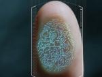 В Сети нашли отпечатки пальцев и пароли 27 млн пользователей Biostar 2