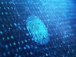 В России нужны технологии поиска преступников по цифровому отпечатку
