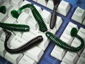 Check Point: Сетевой червь SQL Slammer возобновил свою активность
