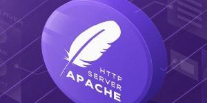 Нераскрытая XSS в Apache Velocity Tools опасна для сайтов в зоне .GOV