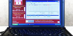 Цена зараженного WannaCry и MyDoom ноутбука на аукционе превысила $1 млн